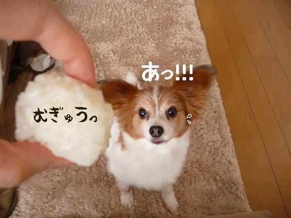 画像 006.pana17.jpg