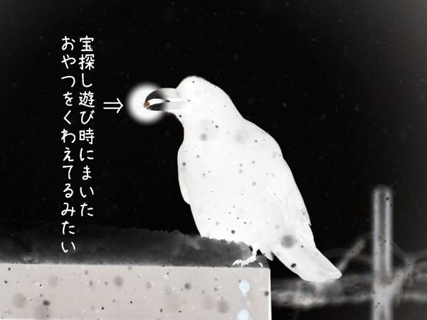 画像 026.ca4.2.jpg