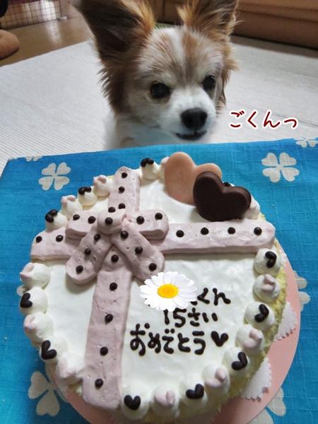 画像 029.cake.jpg