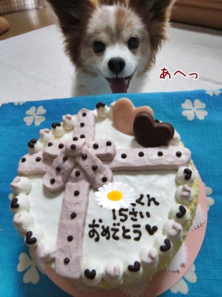 画像 030.cake.jpg