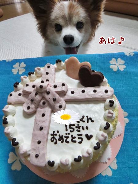 画像 031.cake.jpg