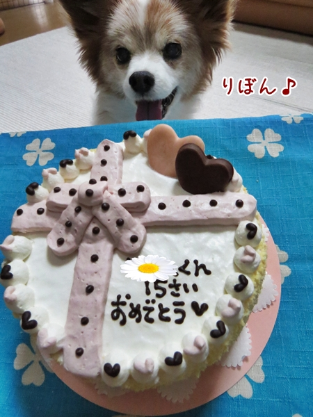 画像 032.cake.jpg