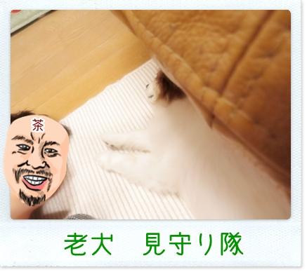 画像 048.cake.jpg