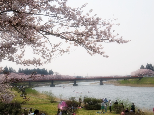 画像 055.sakutabi.jpg