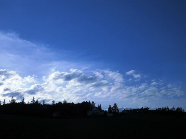画像 072.biei.jpg