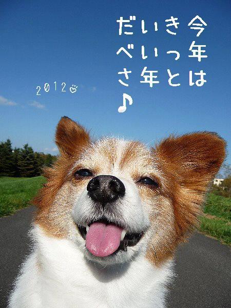 画像 074.hagaki.2012.jpg