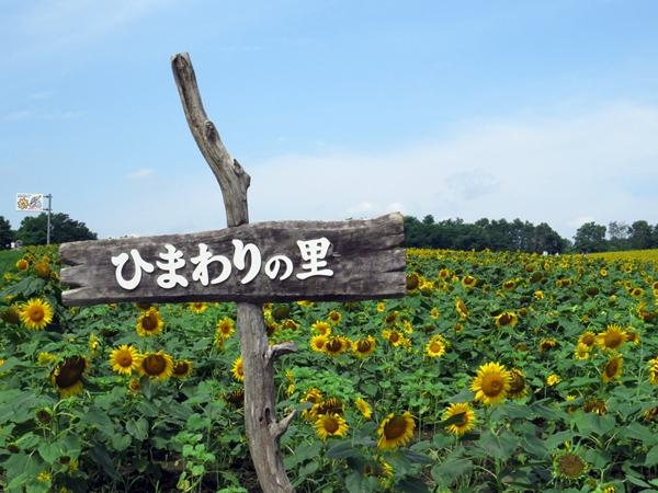 画像 077.hoku.jpg
