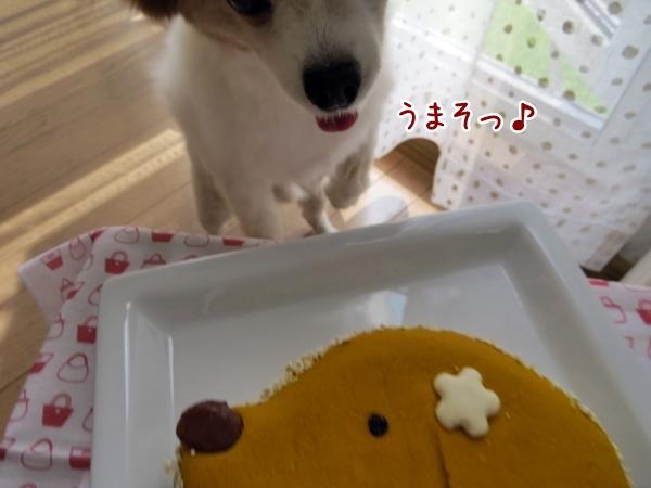 画像 078.cake.jpg