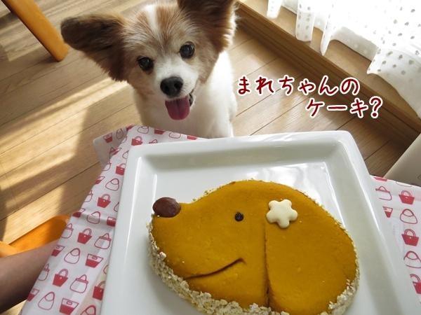 画像 081.cake.jpg