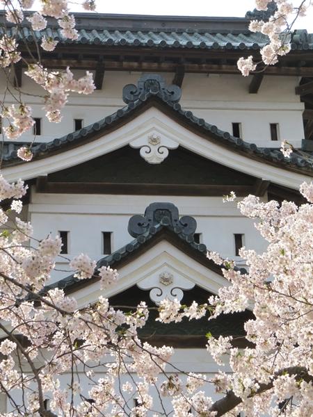 画像 081.sakutabi.jpg