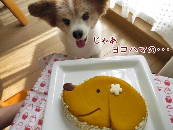 画像 082.cake.jpg