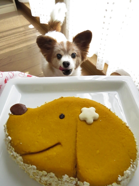 画像 087.cake.jpg