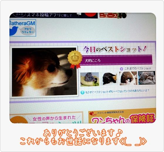 画像 099.be2.jpg