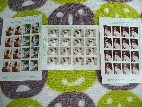 画像 109.pana13.jpg