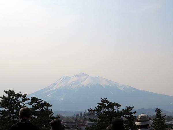 画像 204.sakutabi.jpg