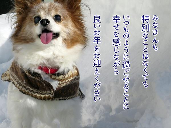 IMG_7581.ca16.JPG