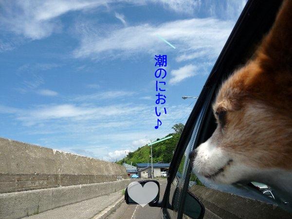 hamasu7.jpg