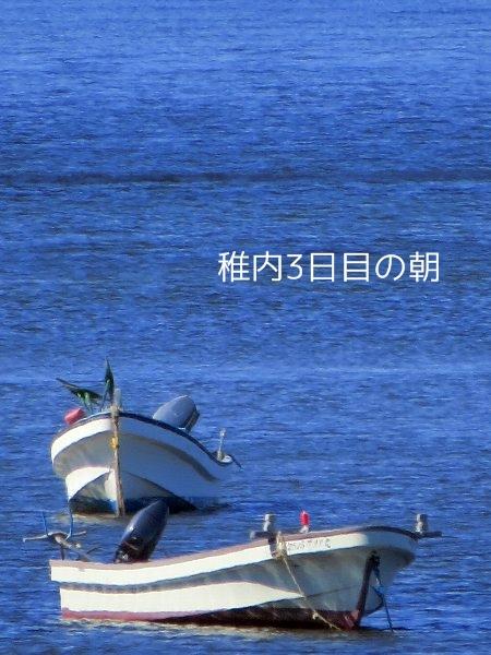 kobu1.jpg