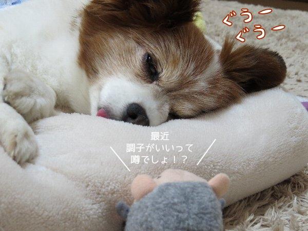 sunaomi2.jpg