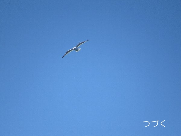 yugata8.jpg